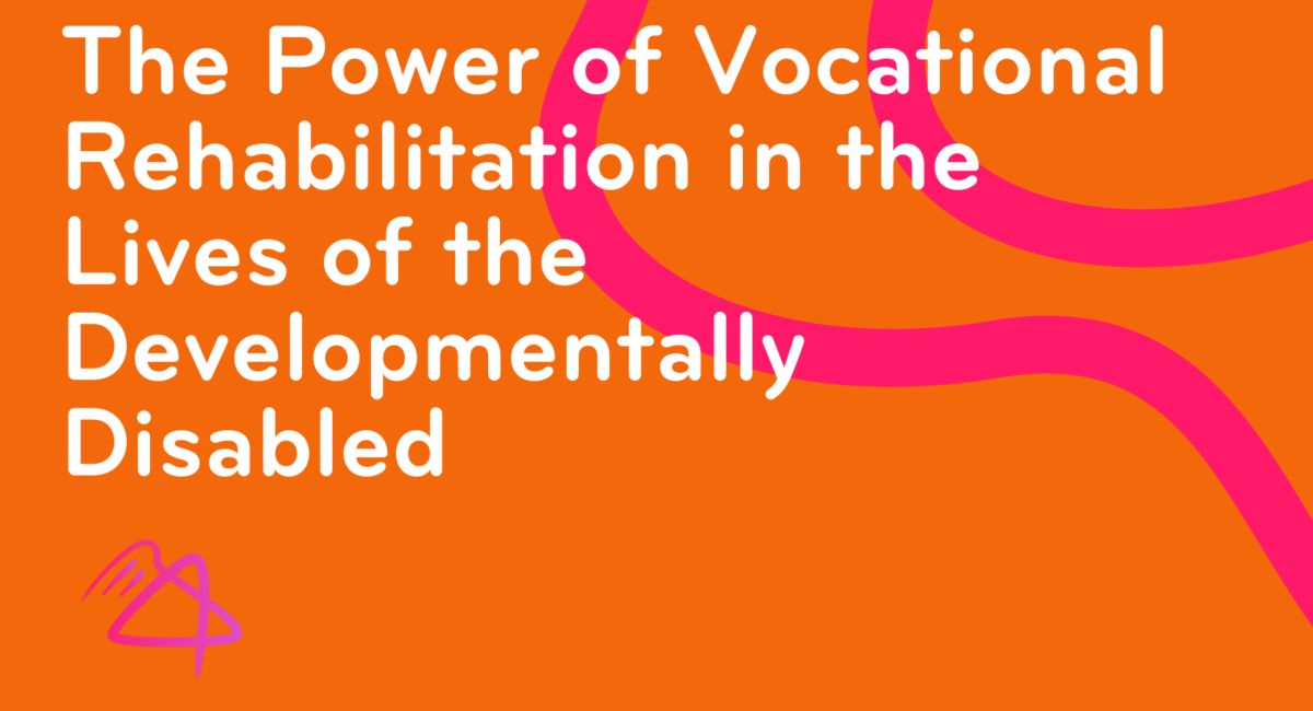 The Power of Vocational Rehabilitation in the Lives of the Developmentally Disabled